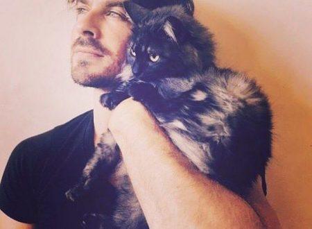 Ian Somerhalder ospite alla Catcon a favore del mondo felino