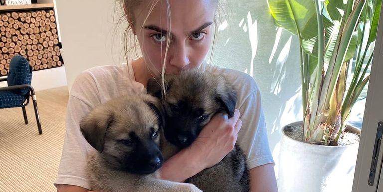 Ashley Benson e Cara Delevingne hanno preso in affidamento due cuccioli per la quarantena!
